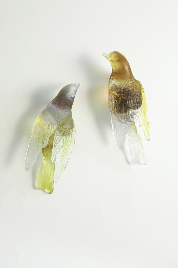 Bell Birds, 2011